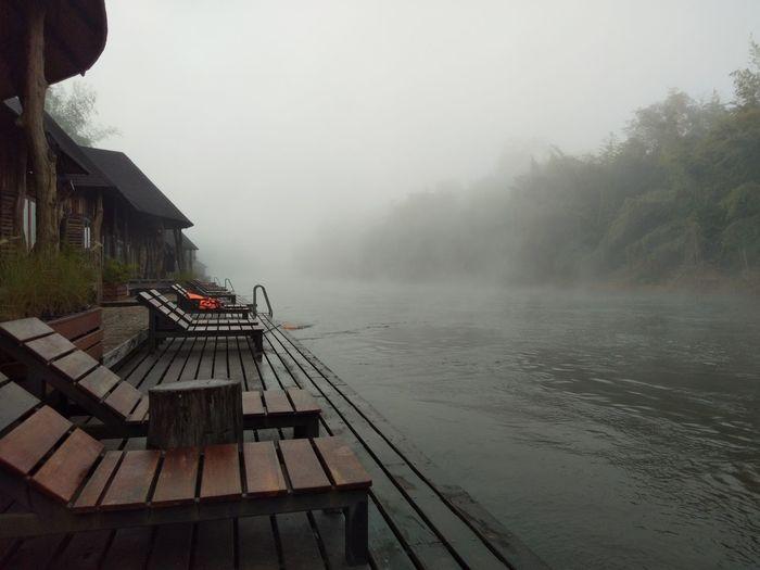 Fog Lake Wood -