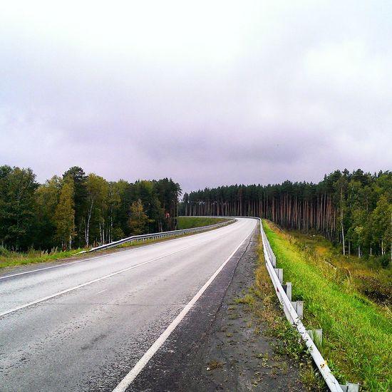 Дорога любимое место