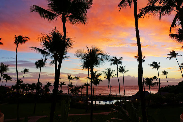 Breathtaking Breathtaking View Christmas Vacation Hawaii Hawaii Sunset Maui Maui, Hawaii Resort Hotel Amazing Amazing Nature Beach Beach Day Beauty In Nature Breathtaking Sunset Cloud - Sky Island Maui Hawaii Maui Sunset Nature Resort Sea Sky Sunset Vacation Vacation Destination