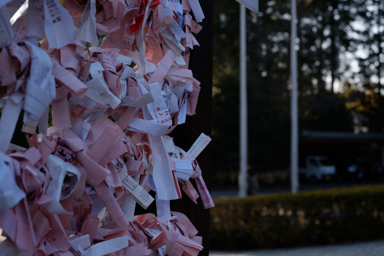 Close-up of fortune papers tied up against trees during sunset