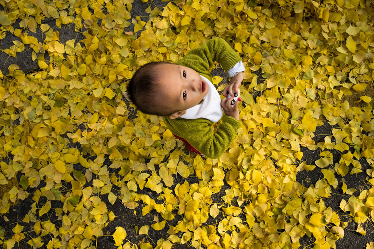 High Angle View Of Boy Standing On Yellow Autumn Leaves