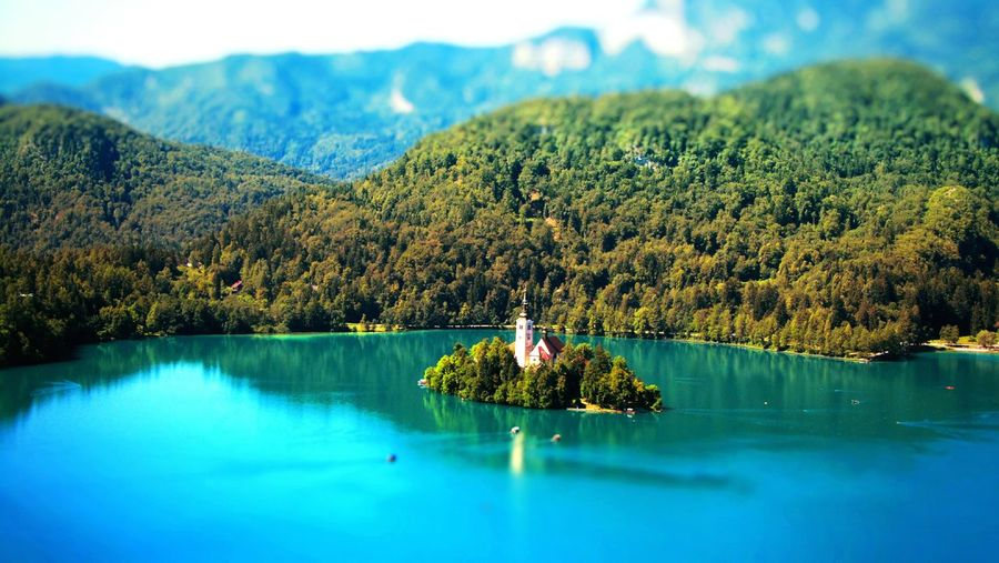 Travel Travel Destinations Tourism Traveling Tourist Attraction  Nature Photography Nature On Your Doorstep Nature Beauty Patterns In Nature Tranquil Scene Natural Pattern Summer Bled Island Bled Lake Bled Lake Slovenia Bled, Slovenia Mountain Range Mountains Lake View Slovenian Alps Slovenia Scapes Slovenia Outdoors Nature Calmness