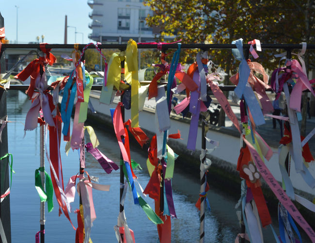 Aveiro Aveiro, Portugal Colors Portugal Day Hanging Multi Colored Outdoors