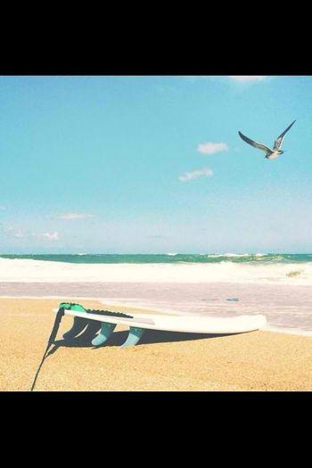 #beach #luvin'