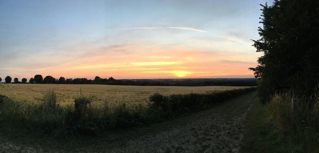 Sunset Walking Around Voerendaal Nature