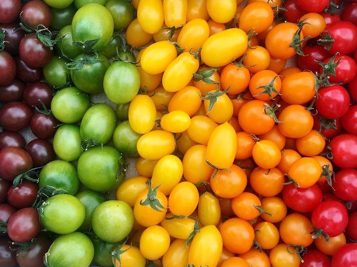 Full frame shot of various tomatoes