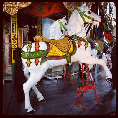 #horse #igers #igfamos #instagood Horse Igers Instagood Igfamos