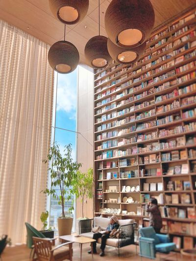 Books Bookshelf Window Architecture Day Indoors  Built Structure No People Potted Plant Chair