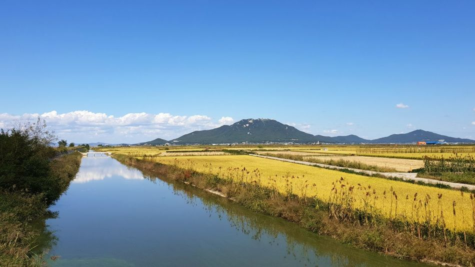 Water Mountain Clear Sky Rural Scene Tree Lake Agriculture Irrigation Equipment Reflection Blue Crop  Standing Water Farm