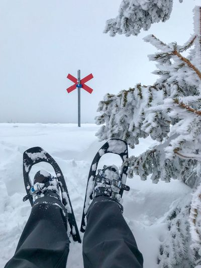 Snowshoe hiking Nature Winter Landscape Snow Winter Snowshoe Trip Snowshoes Snowshoeing Snowshoe Winter Hiking Winter Activities Winter Walk Trail Marker Hiking Scandinavia Sweden Outdoor Life One Person Low Section White Color Unrecognizable Person Leisure Activity Frozen Outdoors