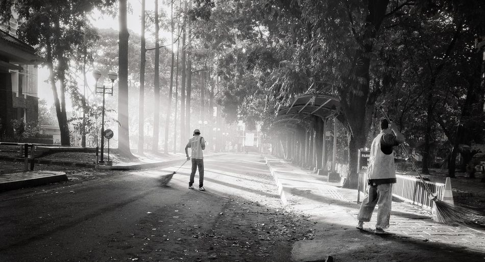Men cleaning messy street by trees