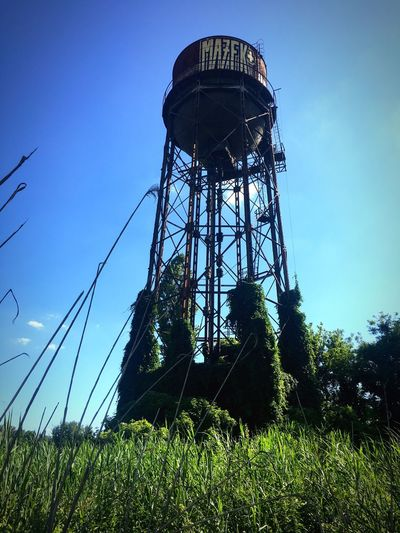 Grass Low Angle View Blue Field Sky Plant Day Outdoors Nature Green Grassy Tranquility Tranquil Scene Landscape Beauty In Nature Rural Scene Sunny Engineering Old Water Tower Iphonephotography IPhoneography Iphone6s