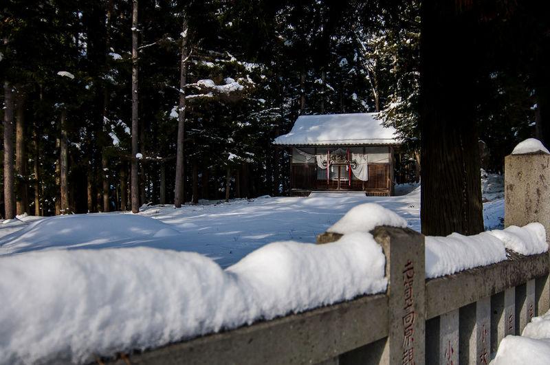 shinto shrine at jigokudani yaen koen Shinto Shrine Architecture Cold Temperature Day Frozen Nature No People Snow Temple Tree White Color Winter