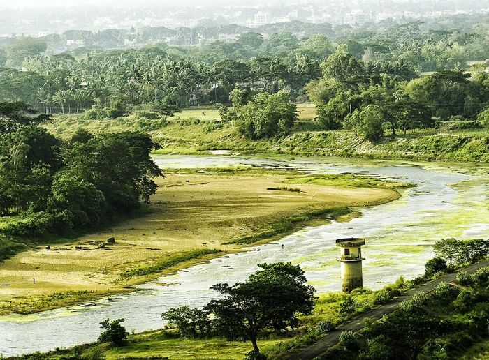 First Eyeem Photo Dhauli Bhubaneswar Lighthouse Daya River Landscape Green River Odisha Getting To Know Ashoka