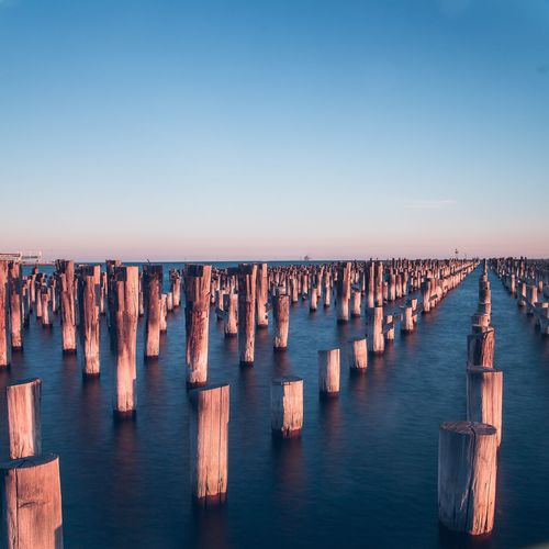 Wooden posts in the sea