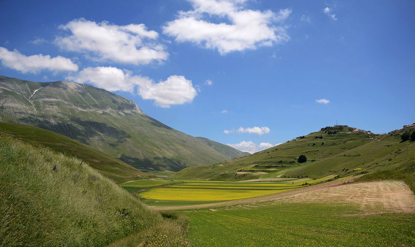 landscape of italian plateau on summer Field Agriculture Plateau Mountain Outdoors Blooming Castelluccio Di Norcia Italy Sunny Cloud Landscape High Angle View Flowering Plant EyeEm Nature Lover