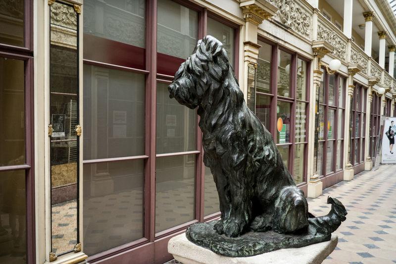 Architecture Art Autun Building Built Structure Day Dog Dog Sculpture Outdoors Passage Couvert Balthus Promenade Sculpture Sky