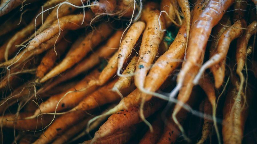 Full frame shot of root vegetables