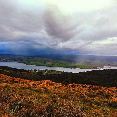 i am watching lake waihola raining? Cloudy Raining Dunedin Newzealandgeographic gigatowndunedin waihola rural lake southernscenicroute nz daytrip lakeview