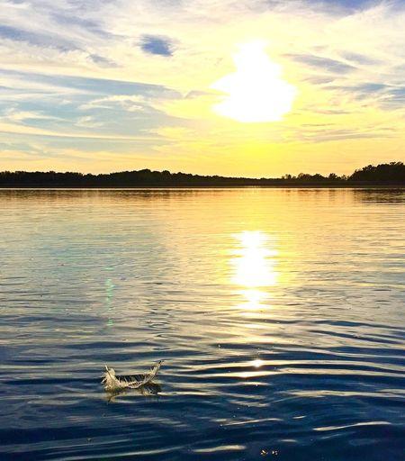 Feathers sunset Lake Kayaking Indiana Lastsunetofsummer