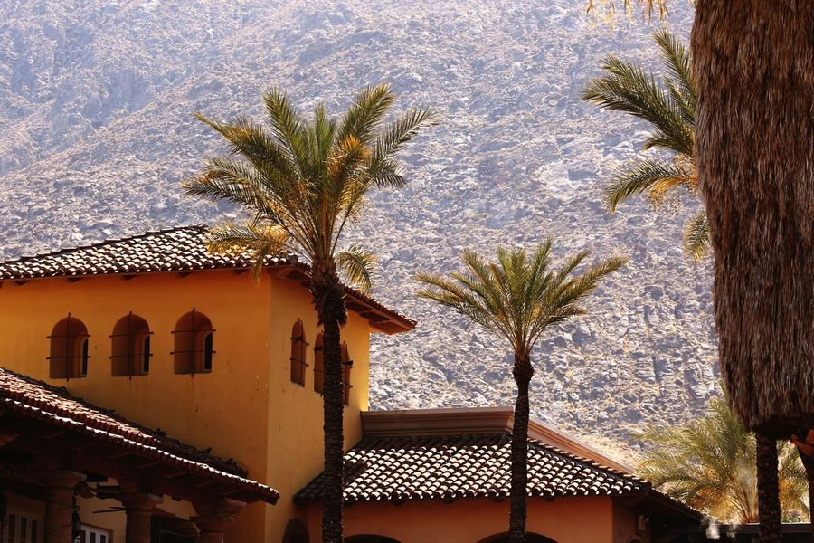 Desert Desert Beauty Tile Roof Villa Tree Plant Built Structure Architecture Building Exterior Nature Sky No People Building Low Angle View Outdoors Growth Day Palm Tree Window Sunlight