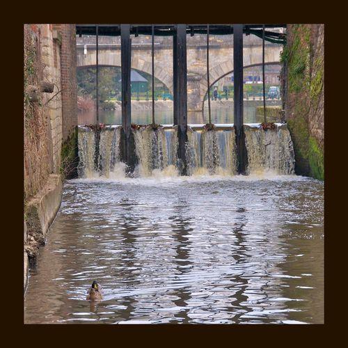 À Romorantin — France — Water Water_collection River Romorantin Riviere EyeEm Nature Lover Eye4photography  EyeEmBestPics EyeEmbestshots