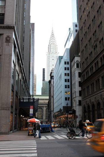 The Chrysler building seen from 5th ave. New York City Hot Dog Street Vender Architecture Bicycle Taxi Chrysler Building City City Street Cityscape Hot Dog Stand New York City Skyscraper Yellow Taxi
