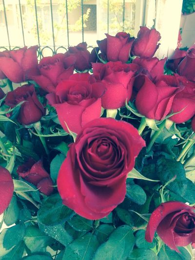 My Favorite Photo Aşk♥ Sevgi Heyecan Hayat Ozlemek Can Tutku