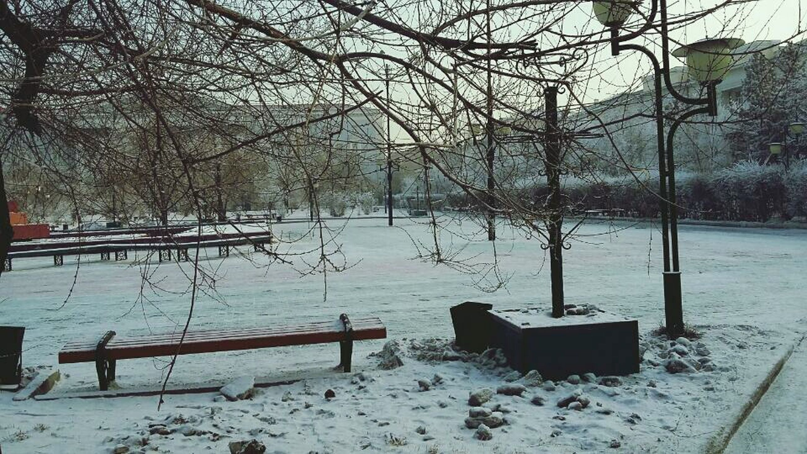 snow, tree, winter, bare tree, cold temperature, branch, water, season, tranquility, nature, tranquil scene, weather, tree trunk, day, lake, beauty in nature, frozen, no people, scenics, outdoors