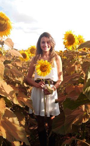 Taking Photos Sunflowers Girassol Enjoying Life