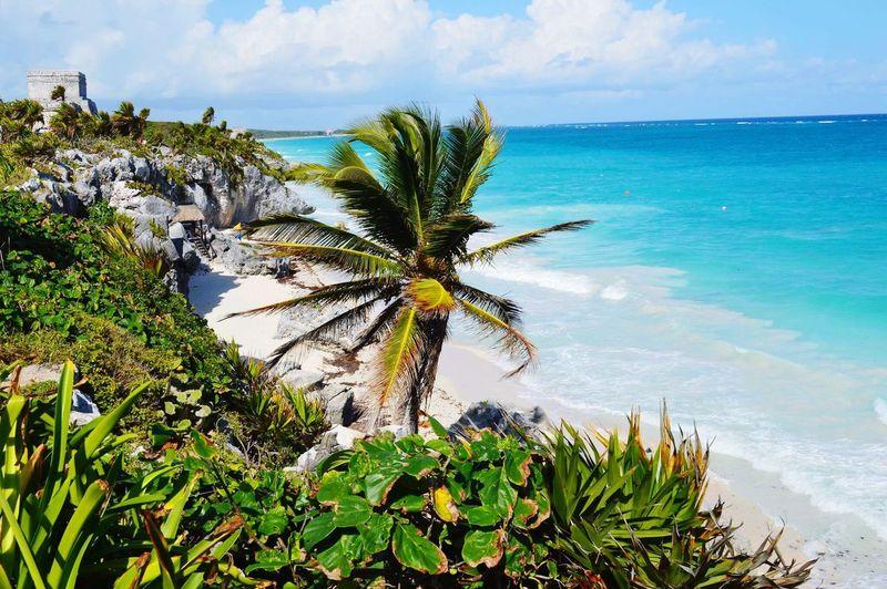 Beautiful view of Tulum,Mx Ruins Caribe Mexicano Tulum,Mx Beach Caribeansea Mayanruins Photoshoot Sand Caribean EyeEmNewHere