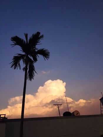 Evening Clouds And Sky Blue Sky Sunset_collection On My Roof Cobalt Blue By Motorola