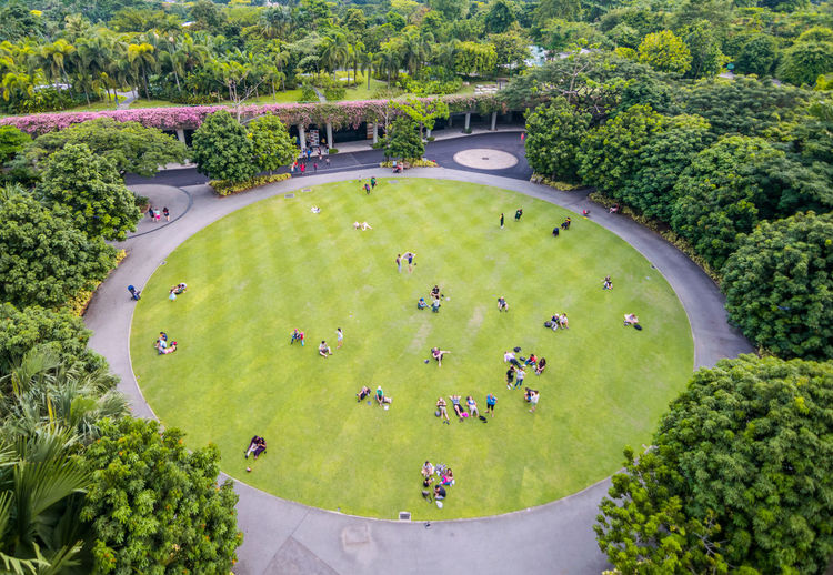 High angle view of people in garden