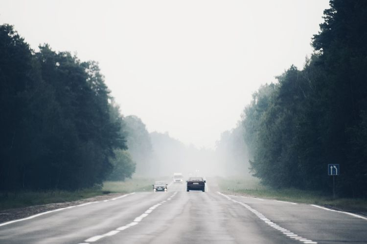 Trip to Belarus 🚘 Day 1 Road Trip Travel Destinations Belorussia Belarus Traveling Travel Photography Road Transportation Tree The Way Forward Plant Motor Vehicle Car Sky Direction Land Vehicle Nature Mode Of Transportation Fog Road Marking Travel Diminishing Perspective Outdoors