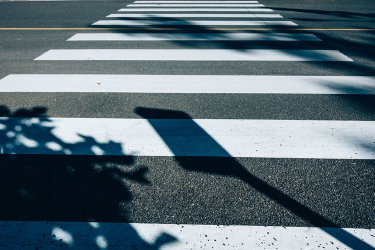 Zebra Crossing With Shadow During Sunny Day