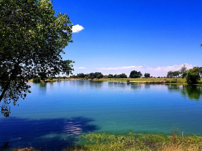 Tree Water Nature Lake Beauty In Nature Blue Sky Outdoors Scenics Tranquility No People Day Plant Landscape Clear Sky EyeEmNewHere The Great Outdoors - 2017 EyeEm Awards