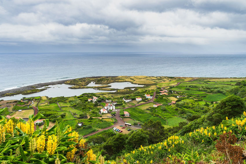 Faja do Cubre, Sao Jorge Island, Azores, Portugal Azores Portugal Beauty In Nature Cloud - Sky Day Environment Green Color Growth Horizon Horizon Over Water Land Landscape Nature No People Outdoors Plant Sao Jorge Island Scenics - Nature Sea Sky Tranquil Scene Tranquility Tree Water
