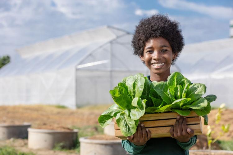 African boy holding wood basket of lettuce vegetable salad to show after harvesting in