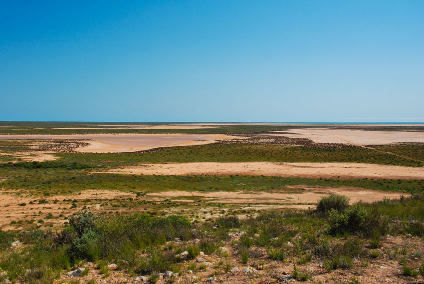 The desert of Cape Range National Park. With the ocean far away in background. Seems like a dead zone, however it plenty of hidden animals ! - in Western Australia Australian Landscape Australian Outback Australian Bushland Trip Western Australia Arid Climate Beauty In Nature Blue Bush Cape Range National Park Clear Sky Desert Environment Explore Land Landscape Nature No People Outdoors Scenics - Nature Semi-arid Sky Tranquil Scene Tranquility Travel Destinations