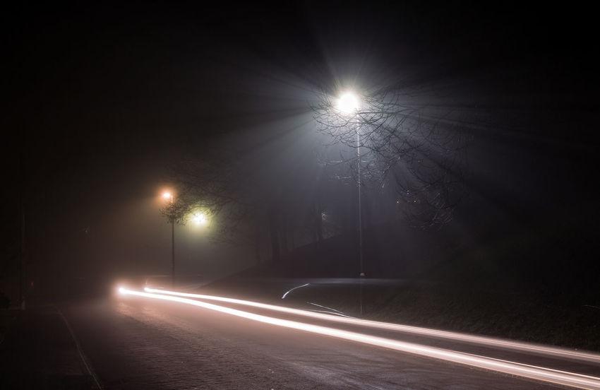 January Fog - Tree Fog Illuminated Light Trail Long Exposure Night No People Outdoors Road Sky Speed Spotlight Street Street Light