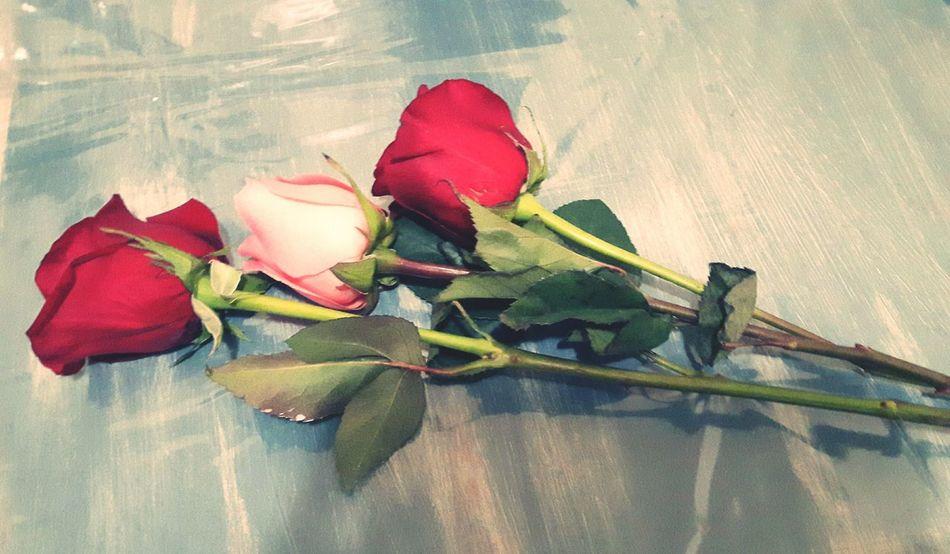 Happy Mother's Day! Roses🌹 Jesuslovesyou ♥