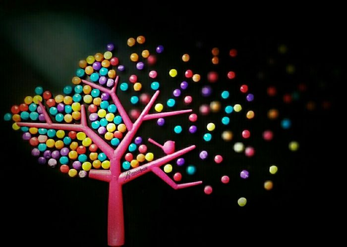 Candies Obsession Plastic Tree First Eyeem Photo