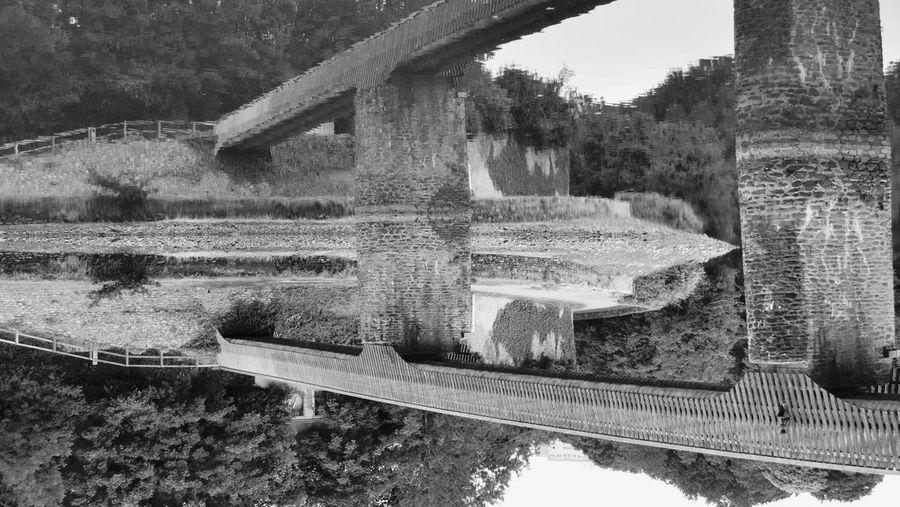 Scenic view of bridge over water