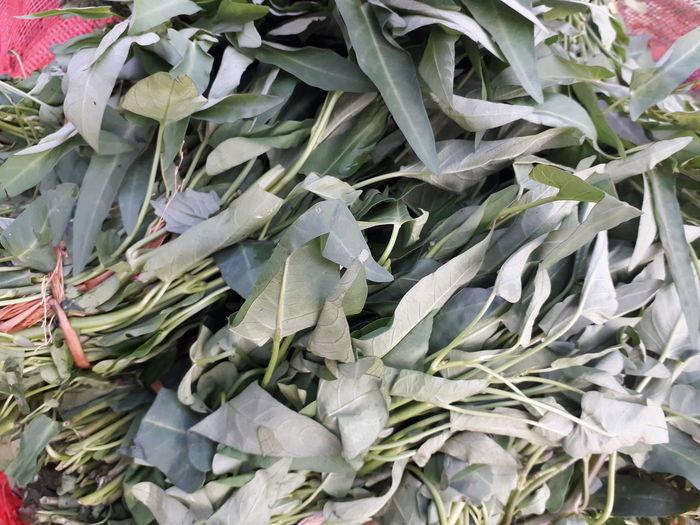 Full frame shot of leaves in market