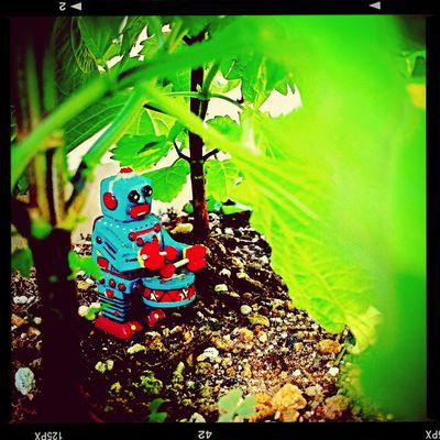 Toys Green