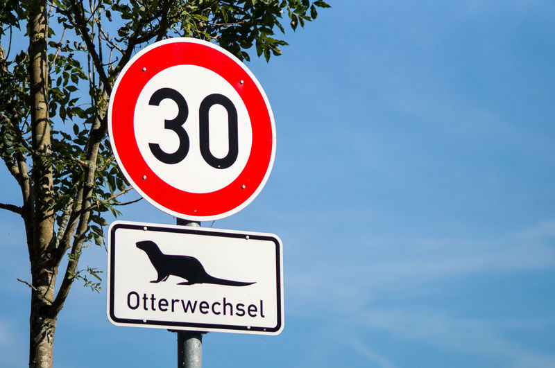 Low angle view of speed limit sign