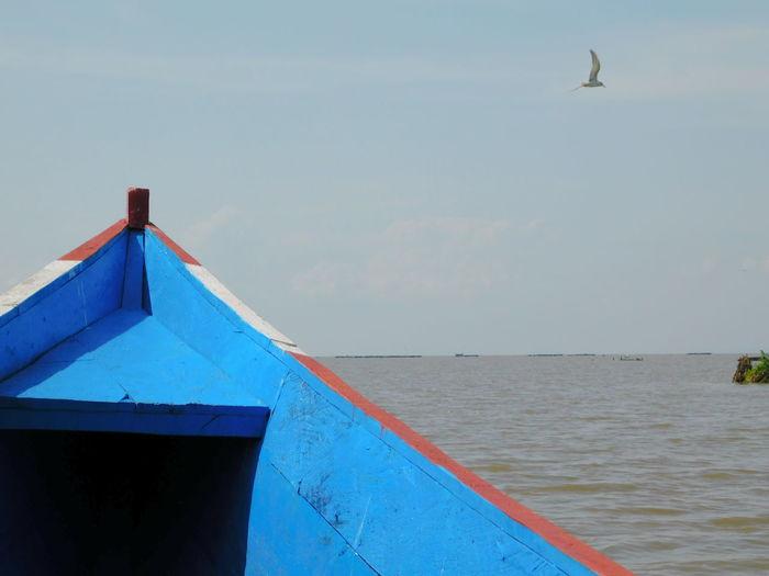 Serene Boat