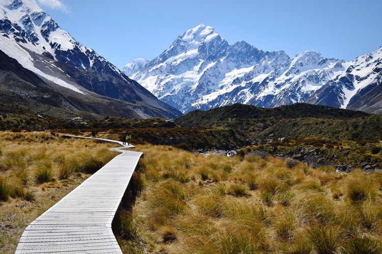 The highest mountain in New Zealand Road Trip Landscape Wild NZ South Island Mount Cook Mountain Beauty In Nature Scenics - Nature Snow Cold Temperature Winter Mountain Range Landscape Mountain Peak Day Nature Environment Tranquil Scene Sky Snowcapped Mountain Tranquility No People Idyllic