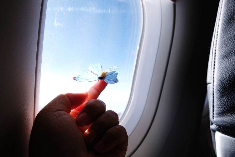Cropped image of hand holding airplane at window