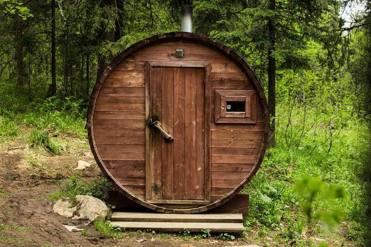 Old wooden door in forest